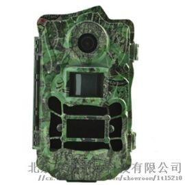 BG962-36W无运动模糊广角超高清红外相机