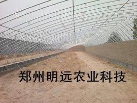 郑州双梁镀锌管日光温室大棚安装团队