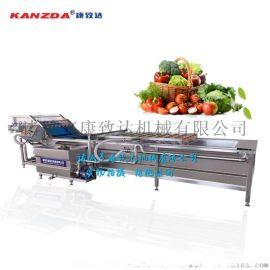 蔬菜清洗机 定制清洗筛选 气泡清洗机