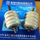 賽力盟高壓電機接線柱瓷瓶套(Y/J)