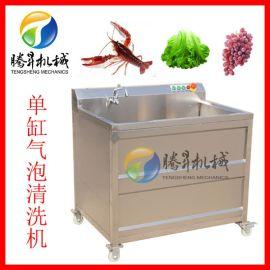气泡洗菜机 红枣清洗机 臭氧消毒单杠洗菜机