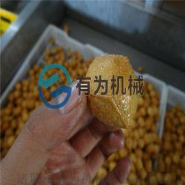 加工定做小型豆泡,鱼豆腐,兰花干油炸机
