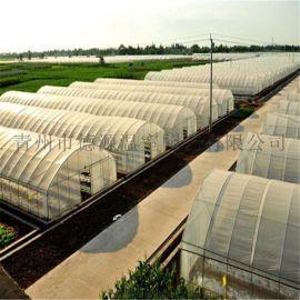 水果日光温室 小型蔬菜大棚 日光温室骨架