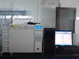 天然气组分分析气相色谱仪