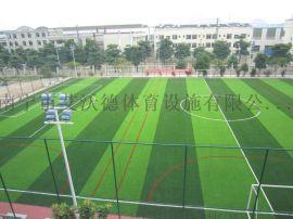 南宁人造草皮足球场建设