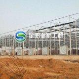 【玻璃温室阳光板】安装生产 花卉蔬菜大棚 厂家直销