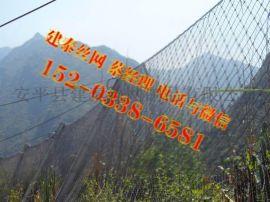 sns防护网生产厂家