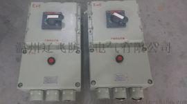 BLK53-100/3P防爆断路器/粉尘防爆开关箱