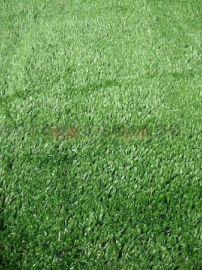 哪里有卖工地盖土网防尘网人造草坪