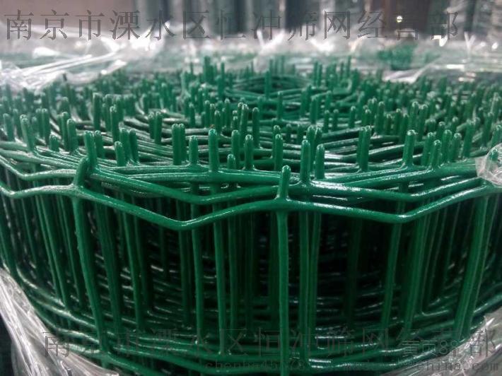 荷兰网,浸塑电焊网,涂塑电焊网 - 南京恒冲PVC涂塑荷兰网