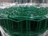 荷蘭網,浸塑電焊網,塗塑電焊網 - 南京恆衝PVC塗塑荷蘭網