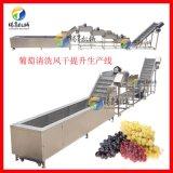 定制款葡萄清洗风干提升生产线 水果清洗风干生产线