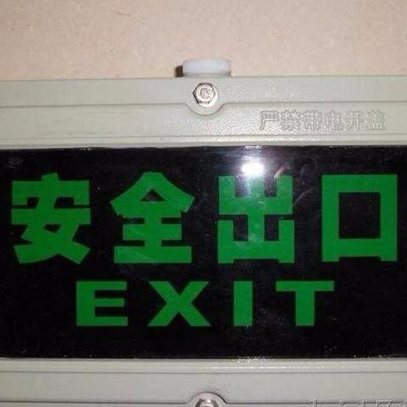 BAYD51-9/20防爆标志灯 防爆应急照明灯