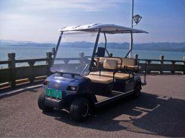 成都朗动六座高尔夫观光车