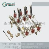 强驰电力N7-12系列户内高压负荷开关及熔断器