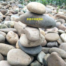 中山鹅卵石批发 中山鹅卵石价格 中山鹅卵石多少钱?1