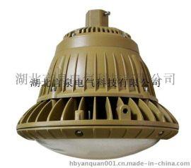 壁式30WLED防水防尘防腐灯