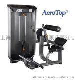 愛普AEROTOP力量健身器材愛普WK-599坐式背腹肌訓練機
