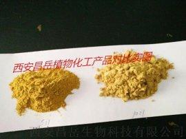 姜黄提取物10% 水溶性的姜黄
