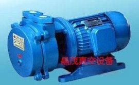 水环真空泵,2BE1水环真空泵,2BE3水环真空泵,2bef水环真空泵