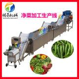 蔬菜清洗切割设备  净菜切割清洗生产线