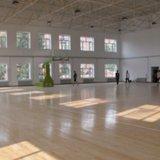 枫木A级定制篮球场馆实木地板 一级硬木运动体育地板