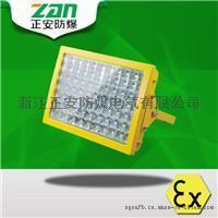海洋王LED免维护防爆灯100W化工厂马路灯LED投光灯护栏式