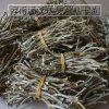 云南满泽铁皮石斛干条的食用方法及怎么吃好
