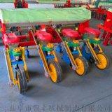 安盟四行柴油播種機拖拉機帶大型玉米播種機圖片