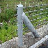 加工生产优质钢索护栏属性@福建钢索护栏性能参数