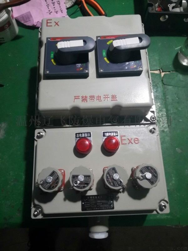 BXMD-10K防爆照明配電箱壁掛式安裝