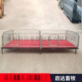 小猪保育床产保一体产床 定位栏全复合板双体母猪产床