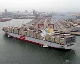 中山到日本各大港口海运 超强的双清关能力