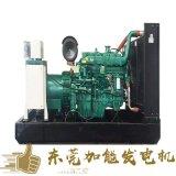 惠州惠東發電機 發電機組  柴油發電機廠家