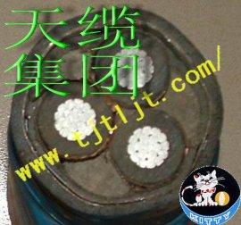 YJLV22 8.7/10KV高压交联电力电缆