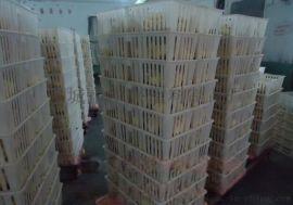 厂家直销专业制作优质小鸡周转筐转运笼