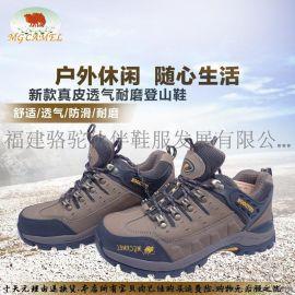 供应美国骆驼MG CAMEL真皮防水防滑透气户外徒步运动登山男鞋