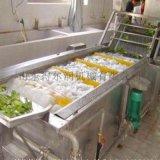 魯DR05聖女果氣泡清洗機 聖女果清洗風幹流水線