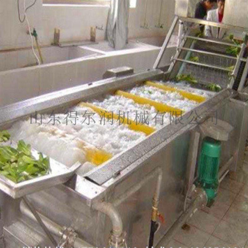 鲁DR05圣女果气泡清洗机 圣女果清洗风干流水线