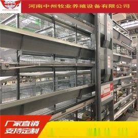 自动喂料机鸡用上料设备层叠鸡笼阶梯蛋鸡笼