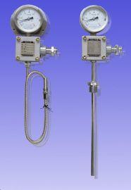 WTZd-285 Z 防爆热电阻远传温度仪表 华业防爆仪表张衡牌测温仪表