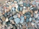 漯河天然拋光五彩鵝卵石生產基地