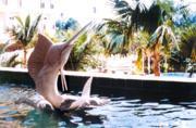 庭院雕塑(海豚戏水)