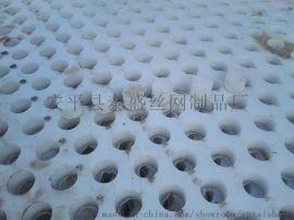洗煤厂塑料孔板网 塑料筛板