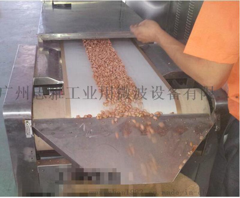 河南长领食品、广州冠华食品微波南乳花生烘烤设备
