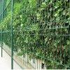 养殖围栏网-农业养殖网-圈地铁丝防护网