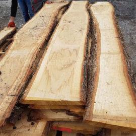 德国金威木业 欧洲白橡 橡木板材 毛边实木ABC级