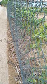 佛山体育场护栏网,市政围栏网,球场围栏,市政护栏厂