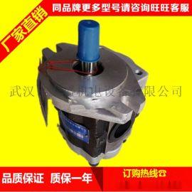 合肥长源液压齿轮泵CBTF-F420-AL*9 洛阳路通洛建压路机齿轮泵(接口螺纹不一样)