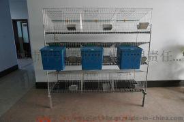 兔笼子厂家直销 商品兔笼价格 大型兔笼养殖线